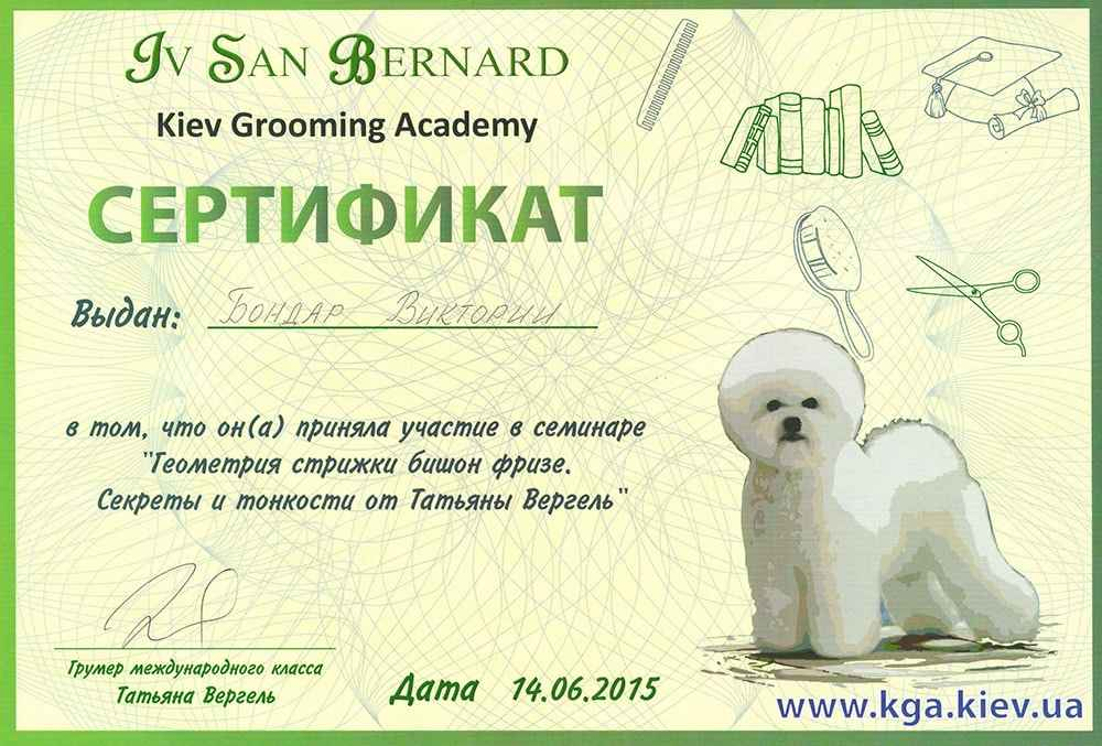 Сертификат стрижки бишон фризе