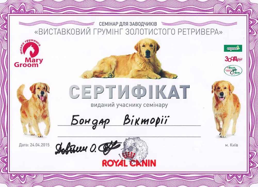 Груминг ретривера, сертификат участника семинара по Грумингу