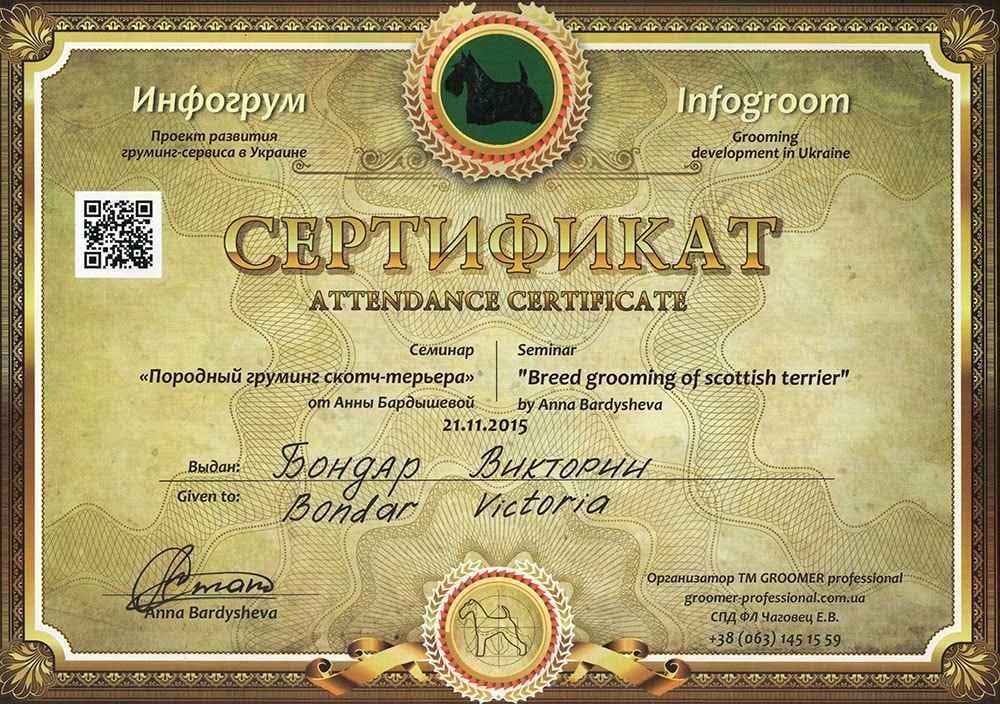 Сертификат по грумингу