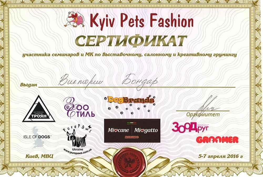 Сертификат по креативному грумингу