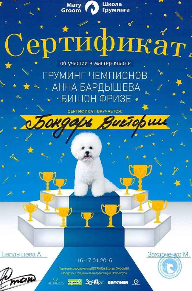 """Сертификат """"Груминг чемпионов"""""""