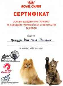 Груминг котов и собак, сертификат гурмера