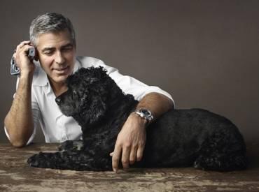 10 знаменитостей, которые души не чают в своих собаках