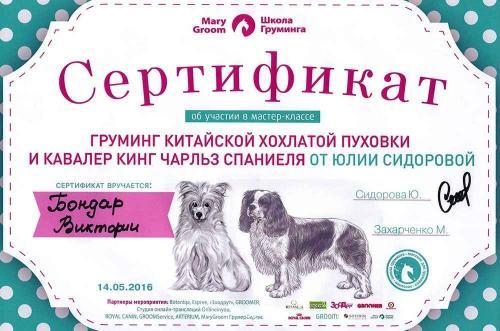 Сертификат Груминг китайской хохлаткой пуховки