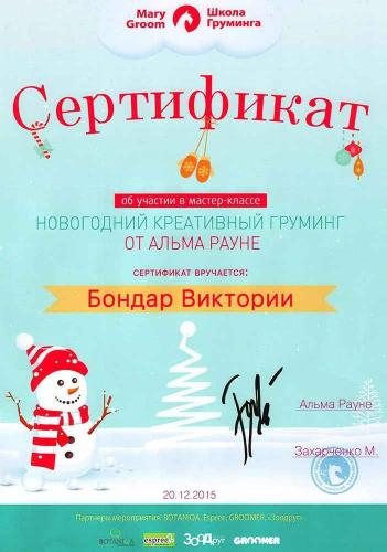 "Сертификат ""Новогодний креативный груминг"" от Альма Рауне"